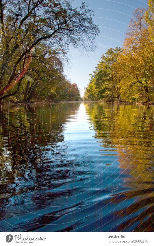 Kanal Fluss Herbstlaub Paddeln Rudern See Strömung Teich Wasser Wasseroberfläche wasserwandern Alter Berlin-Spandauer Schifffahrtskanal spandau Bootsfahrt