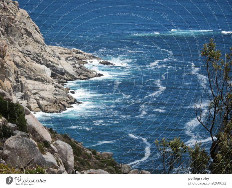 mehr vom Meer sehn Natur blau Wasser weiß grün Baum Ferien & Urlaub & Reisen Pflanze Sommer Ferne Landschaft Freiheit grau Stein Küste