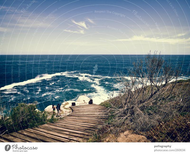 Der Weg Mensch Himmel Natur Wasser Ferien & Urlaub & Reisen Pflanze Sommer Meer Wolken Ferne Umwelt Landschaft Freiheit Wege & Pfade Küste Luft
