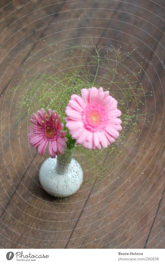 Sommerliche Retro-Grüße aus Paris schön Blume Stil Kunst rosa Design modern ästhetisch Dekoration & Verzierung retro Blühend Blumenstrauß Handwerk trendy Zierde