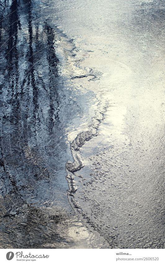 ich krieg hier zustände ... | verwandlung Wasser Winter Eis Frost Teich See Wandel & Veränderung Tauwetter Aggregatzustand Farbfoto Außenaufnahme