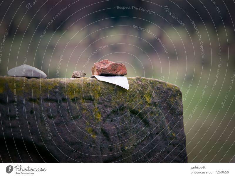 Ein letzter Gruss alt ruhig Tod Religion & Glaube Stein Traurigkeit Zeit Schriftzeichen Trauer Vergänglichkeit Ende Information Zeichen Schmerz Verfall