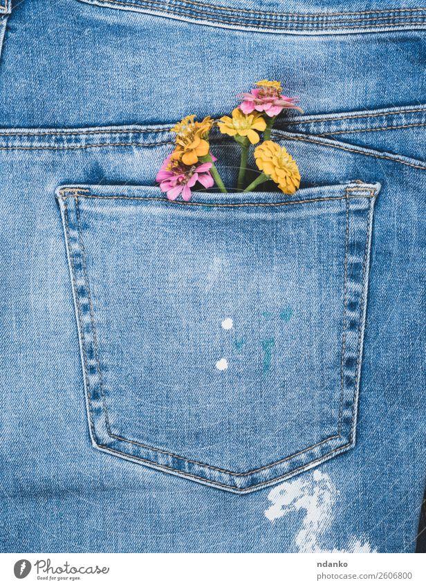 Blumen in der Gesäßtasche von Blue Jeans Stil Design Mode Bekleidung Jeanshose Stoff alt Blühend blau gelb Farbe Jeansstoff Tasche Rücken Konsistenz Hintergrund