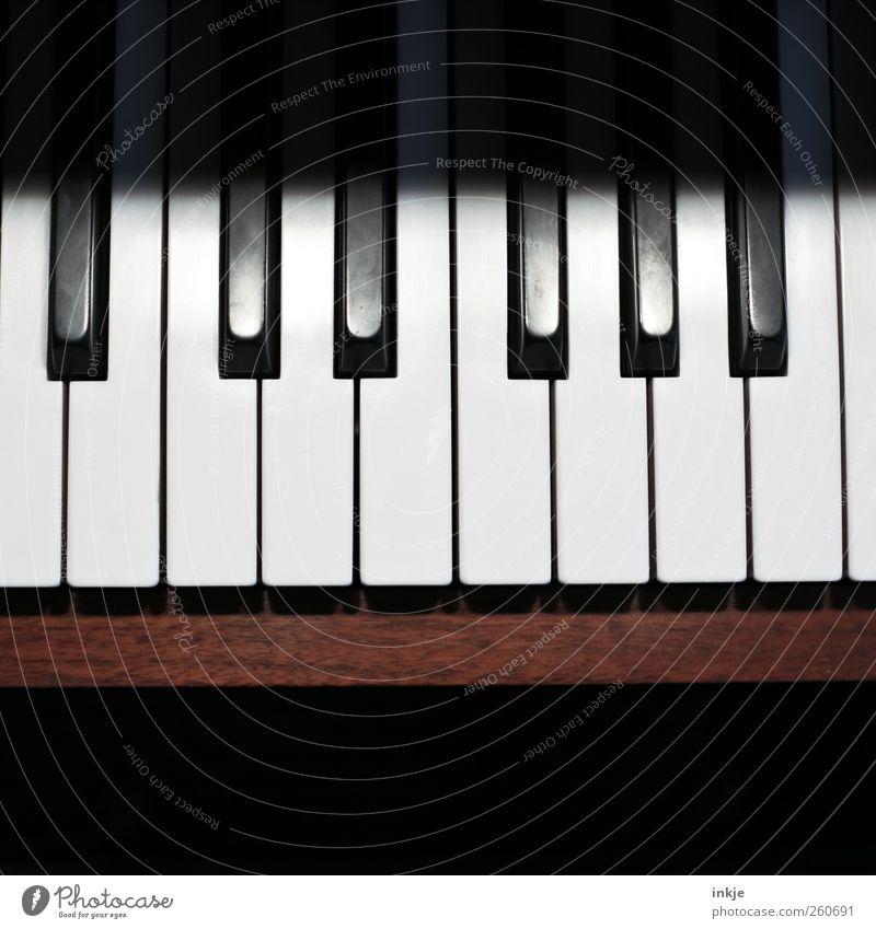 Tastatur weiß schwarz Gefühle Stimmung Musik braun Freizeit & Hobby lernen Kultur Kreativität Leidenschaft Klaviatur Interesse Klavier Inspiration Ton