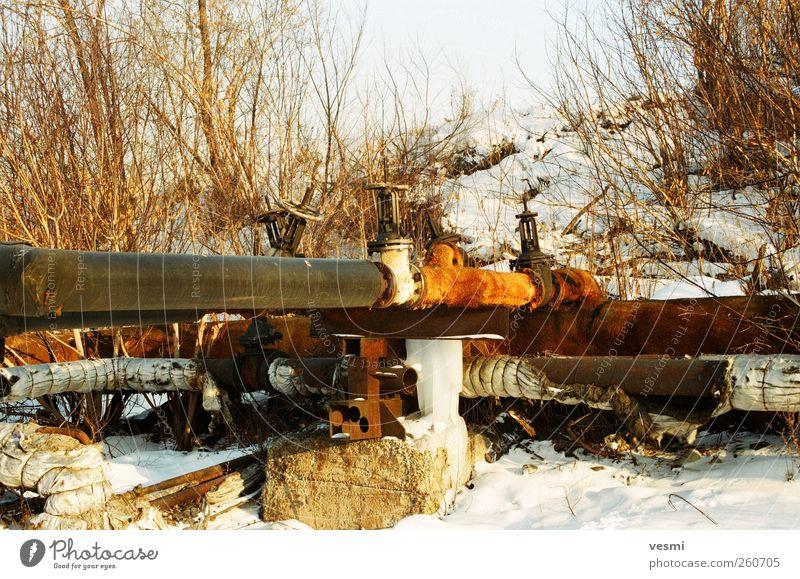 Gas oder Wasser? alt Winter kalt braun Energiewirtschaft Armut Zukunft kaputt Technik & Technologie Wandel & Veränderung Industrie Rost Röhren frieren