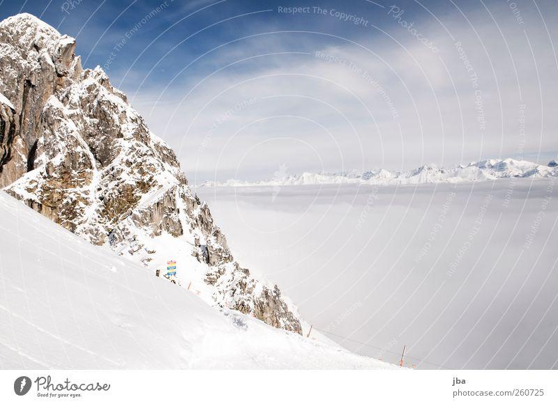 über dem Nebel weiß Winter Wolken Landschaft Leben kalt Schnee Berge u. Gebirge Freiheit Zufriedenheit Felsen Nebel wandern Ausflug Urelemente Alpen