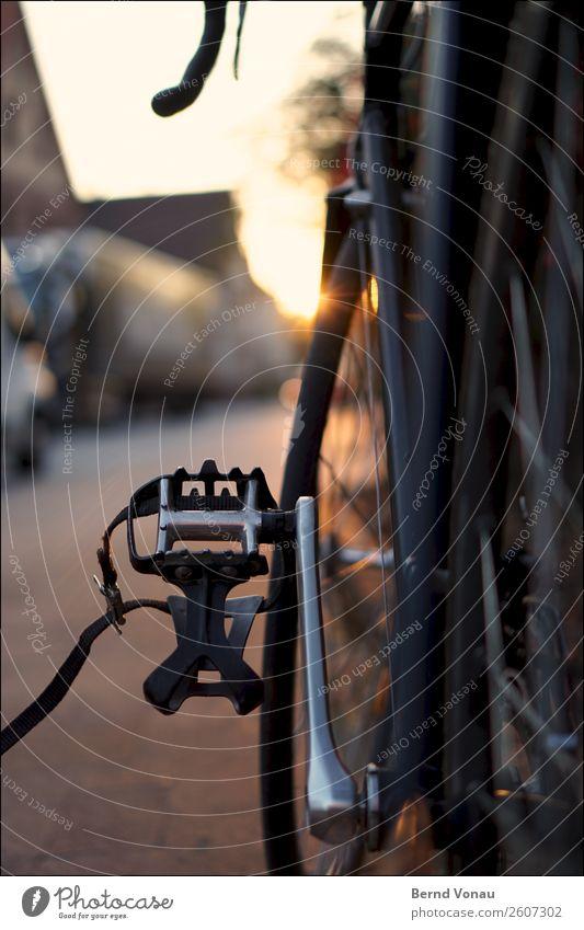 Schwarzes Rennrad an Goldenem Oktober Verkehr Verkehrsmittel Verkehrswege Personenverkehr Fahrradfahren Straße Stimmung goldener oktober Wärme Pause parken