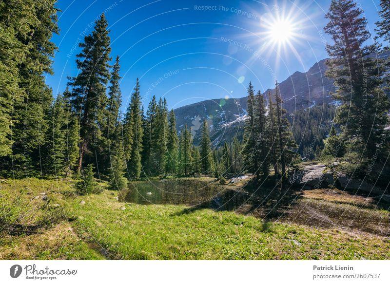 Holy Cross Wilderness, Colorado Zufriedenheit Sinnesorgane Erholung ruhig Ferien & Urlaub & Reisen Tourismus Ausflug Abenteuer Ferne Freiheit Camping