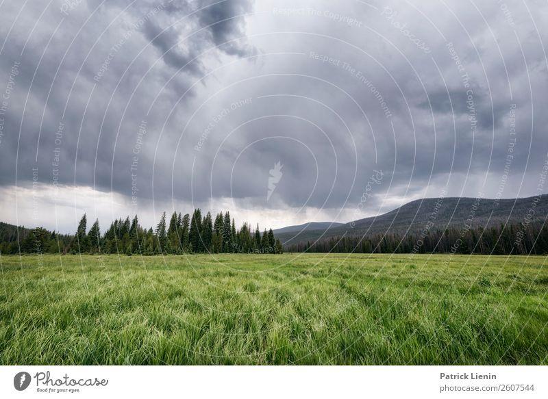 Rainy afternoon Sinnesorgane Erholung ruhig Tourismus Ausflug Abenteuer Ferne Freiheit Camping Berge u. Gebirge wandern Umwelt Natur Landschaft Himmel Wolken