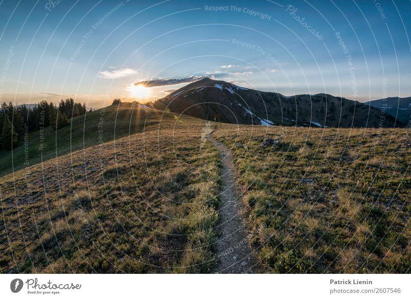 Abendwanderung Zufriedenheit Sinnesorgane Erholung Ausflug Abenteuer Ferne Camping Berge u. Gebirge wandern Umwelt Natur Landschaft Sommer Klima Klimawandel