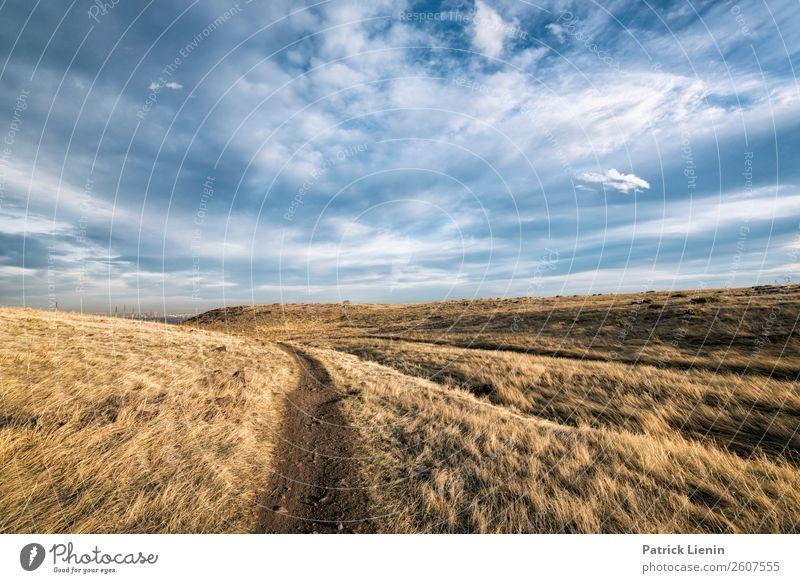 Einbahnstrasse Ferien & Urlaub & Reisen Ferne Freiheit Camping wandern Umwelt Natur Landschaft Urelemente Erde Luft Himmel Wolken Herbst Klima Klimawandel