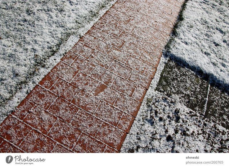 Wege und Pfade Eis Frost Schnee Garten Wiese Wege & Pfade Wegkreuzung Pflastersteine Pflasterweg Stein Linie kalt Einsamkeit Perspektive Dreieck Farbfoto
