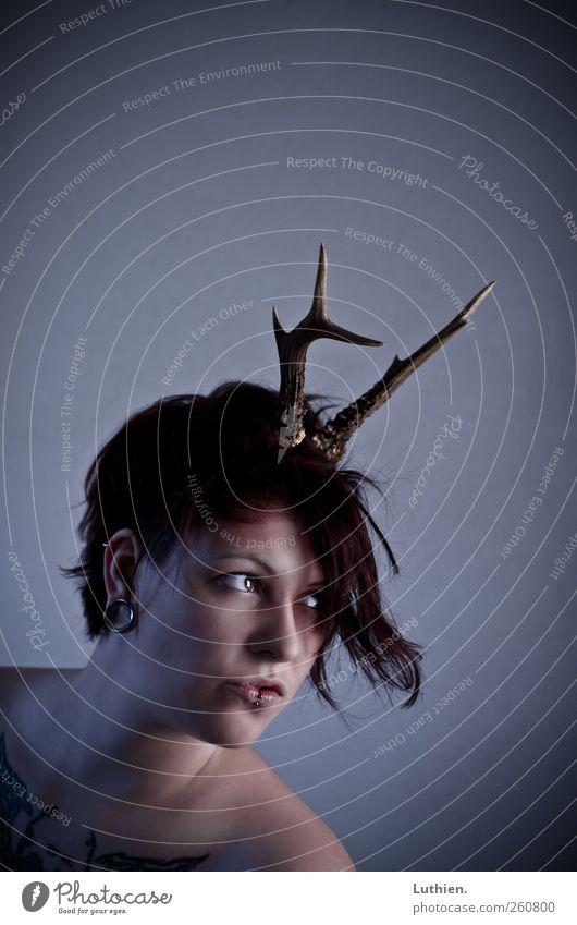 Wolpertinger? Mensch feminin Frau Erwachsene Haut Kopf Gesicht Auge Mund Brust Schulter 1 Accessoire Horn Brunft beobachten Blick außergewöhnlich frech Neugier