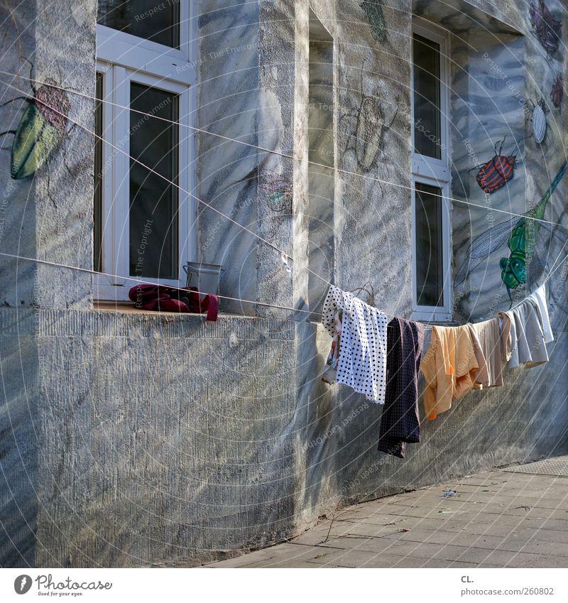waschtag Stadt Haus Straße Fenster Wand Graffiti Mauer Wohnung außergewöhnlich authentisch Häusliches Leben Bekleidung einzigartig Reinigen Sauberkeit
