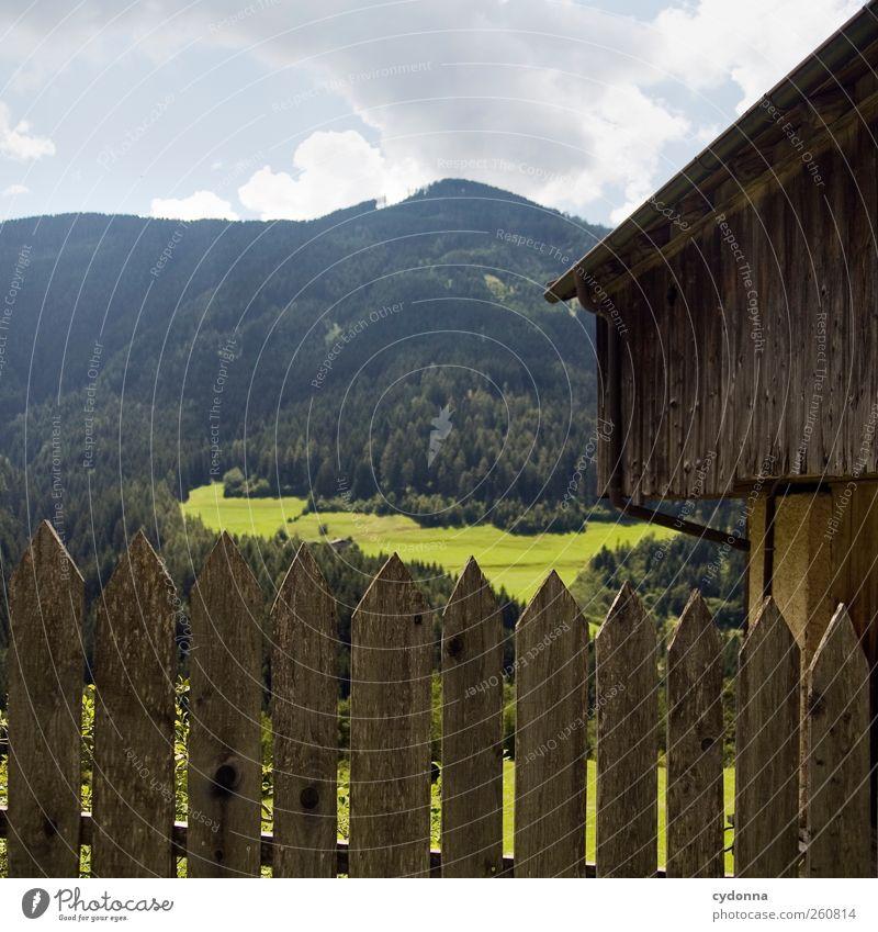 Auf Wanderschaft Himmel Natur Ferien & Urlaub & Reisen Sommer Einsamkeit ruhig Wald Ferne Erholung Umwelt Landschaft Wiese Berge u. Gebirge Freiheit träumen