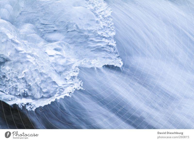 Eis vs. Wasser Leben Winter Natur Frost Bach Fluss Wasserfall blau weiß fließen Wintertag gefroren Strömung glänzend kalt Kälteschock Bewegung Farbfoto
