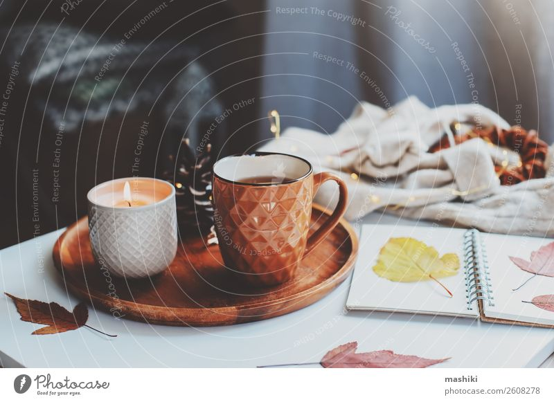 gemütlicher Herbst- oder Wintermorgen zu Hause. Frühstück Tee Lifestyle Erholung Tisch Buch Landschaft Blatt Holz heiß natürlich braun Geborgenheit bequem