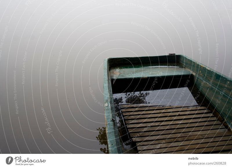 Stille am See Wasser grün Einsamkeit Erholung dunkel Herbst Holz grau braun Nebel Trauer Seeufer gruselig Bucht Dienstleistungsgewerbe