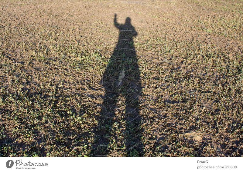 Hallo! Mensch grün Winter schwarz Erwachsene braun stehen 45-60 Jahre lang Hose Jacke winken