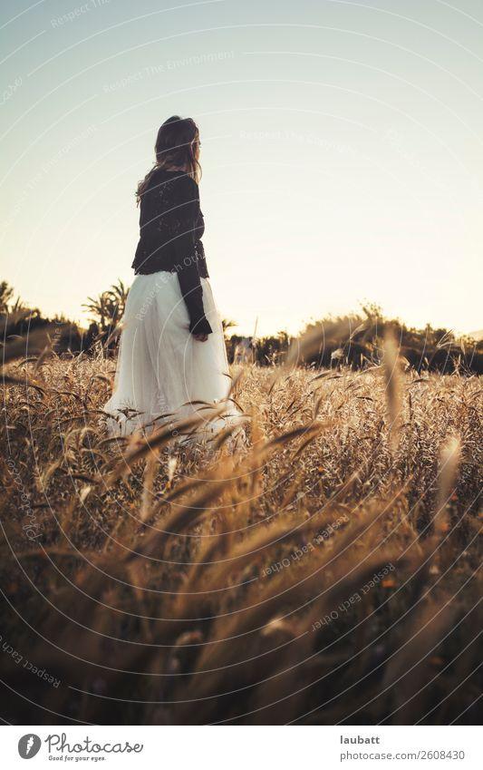 Porträt einer jungen, schönen, zum Horizont blickenden Frau, die inmitten eines Weizenfeldes steht Mädchen Junge Frau Weizenähre Freiheit Stacheln Spike-Feld