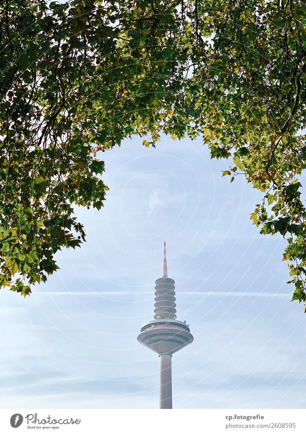 Ginnheimer Spargel blau Stadt grün Baum Holz grau Technik & Technologie Telekommunikation Beton Turm Bauwerk Frankfurt am Main Antenne Satellitenantenne