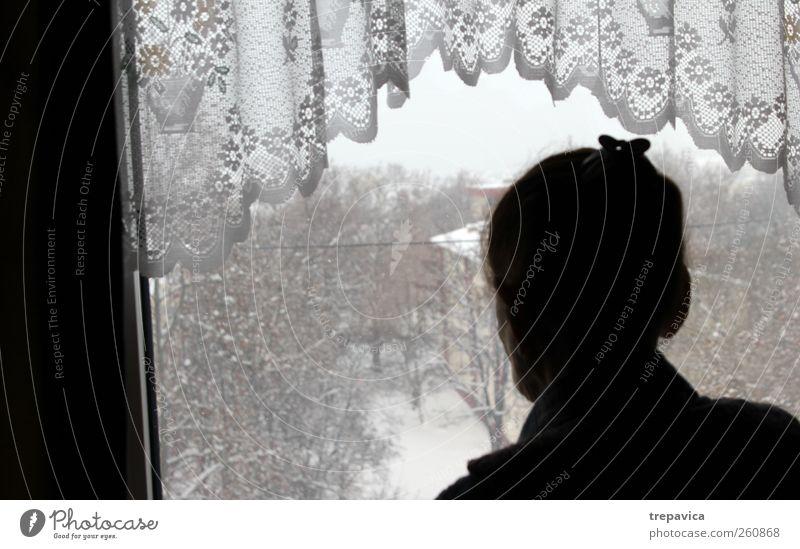 nana III Frau alt Winter Einsamkeit ruhig Fenster Senior Traurigkeit Zeit Rücken warten Vergänglichkeit beobachten Neugier 60 und älter Großmutter