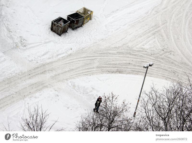 *** Umwelt Winter Klima Klimawandel Wetter schlechtes Wetter Unwetter Schnee Schneefall Baum Stadt Straße Container Linie Bewegung gehen dreckig gelb grau weiß