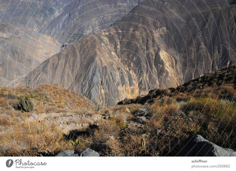 Der Gang nach Canossa Natur Landschaft Urelemente Erde Felsen Berge u. Gebirge außergewöhnlich Berghang Ödland trocken steil tief hoch aufsteigen anstrengen