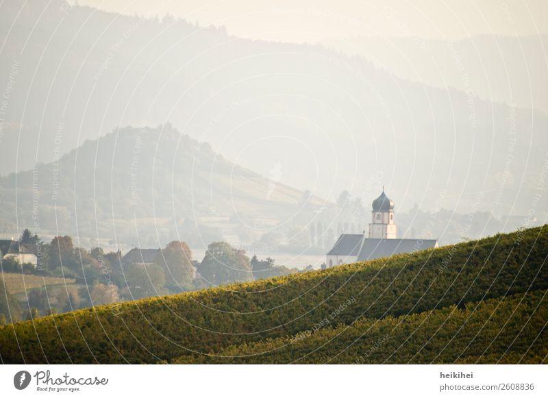 Herbst in Baden, Blick nach Ehrenkirchen Natur Landschaft Feld Hügel Berge u. Gebirge Dorf laufen wandern Freizeit & Hobby Idylle Religion & Glaube