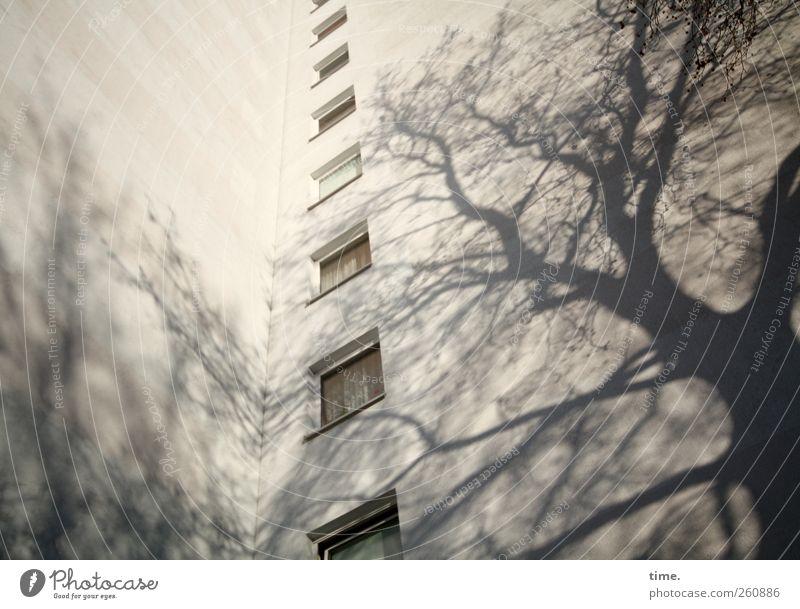 Drohkulisse Menschenleer Hochhaus Architektur Fassade Fenster Coolness eckig gigantisch gruselig unten Stadt gelb ästhetisch Bewegung Partnerschaft bizarr