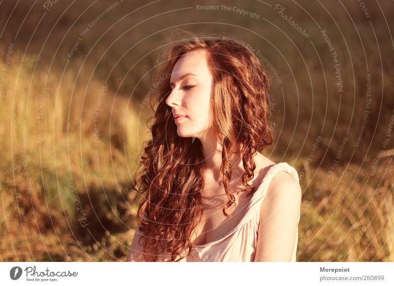 Mensch Natur Jugendliche schön Sonne Gesicht Erwachsene feminin Herbst Gras Kopf Haare & Frisuren träumen braun Feld gold