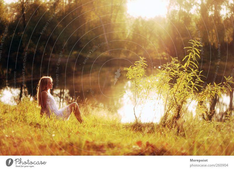 Sonnenuntergang feminin Junge Frau Jugendliche Erwachsene Körper 1 Mensch 18-30 Jahre Natur Erde Wasser Sonnenaufgang Herbst Schönes Wetter Baum Gras Wald