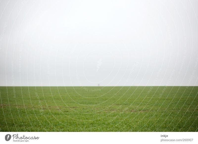 Baum Himmel Natur grün Sommer Einsamkeit Ferne Umwelt Wiese Herbst Landschaft Gefühle Gras Frühling Luft Stimmung