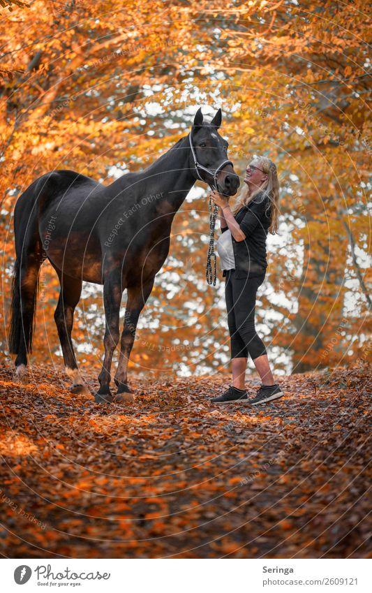 Freunde für immer Freizeit & Hobby Sport Reitsport Mensch feminin Frau Erwachsene 1 Tier Pferd laufen Außenaufnahme Textfreiraum oben Textfreiraum unten Tag
