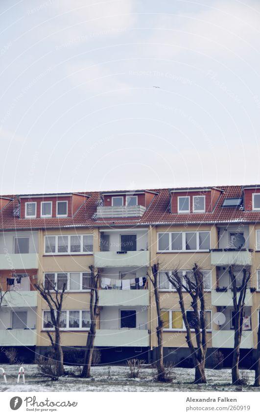 Wäsche an Bäumen. Baum Haus Wohnung Autofenster Häusliches Leben Balkon trocknen Wohnhaus fleißig Nachbar Wäscheleine Alltagsfotografie Mehrfamilienhaus