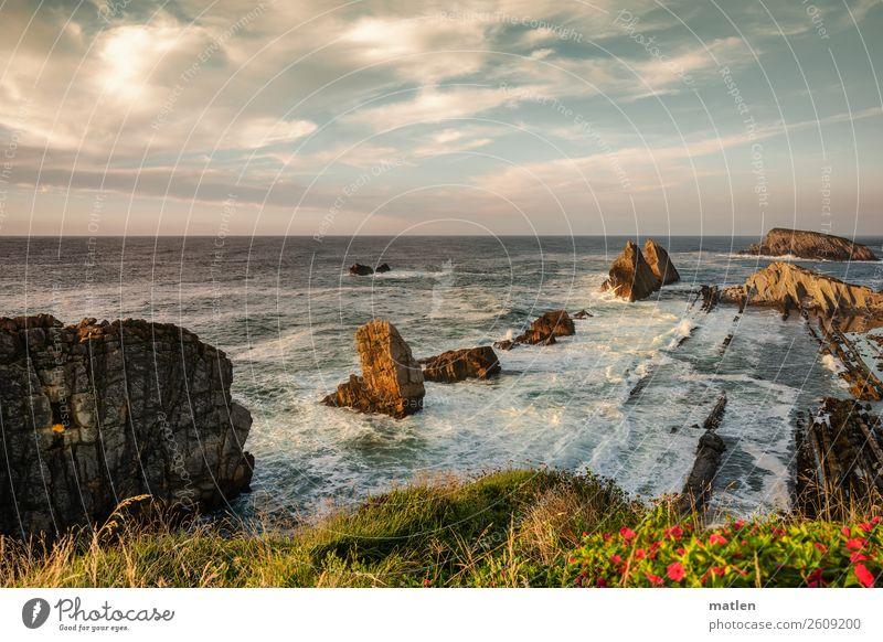Liencres Natur Landschaft Pflanze Himmel Wolken Horizont Sommer Schönes Wetter Blume Gras Wellen Küste Strand Bucht Riff Meer exotisch gigantisch maritim Wärme