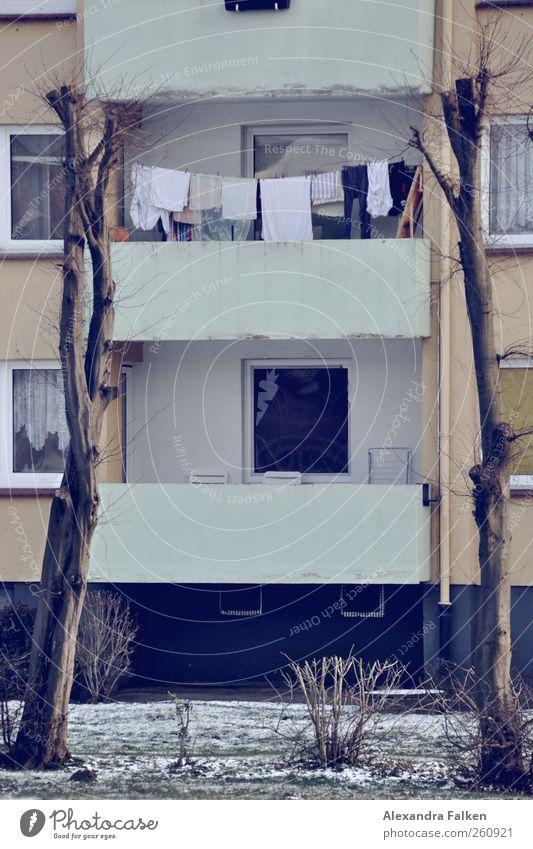 Wäsche an Bäumen II. Haus Gebäude Fassade Balkon Reinlichkeit Sauberkeit Haushaltsführung Wäscheleine Baum Stadthaus Mehrfamilienhaus Nachbar Mietrecht