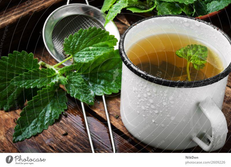 Tee mit grünen frischen Melissenblättern trinken Kraut Gesundheit Blatt Tasse Minze Kräuterbuch Melissen-Tee Pflanze Getränk heiß Aroma Medizin Pfefferminz