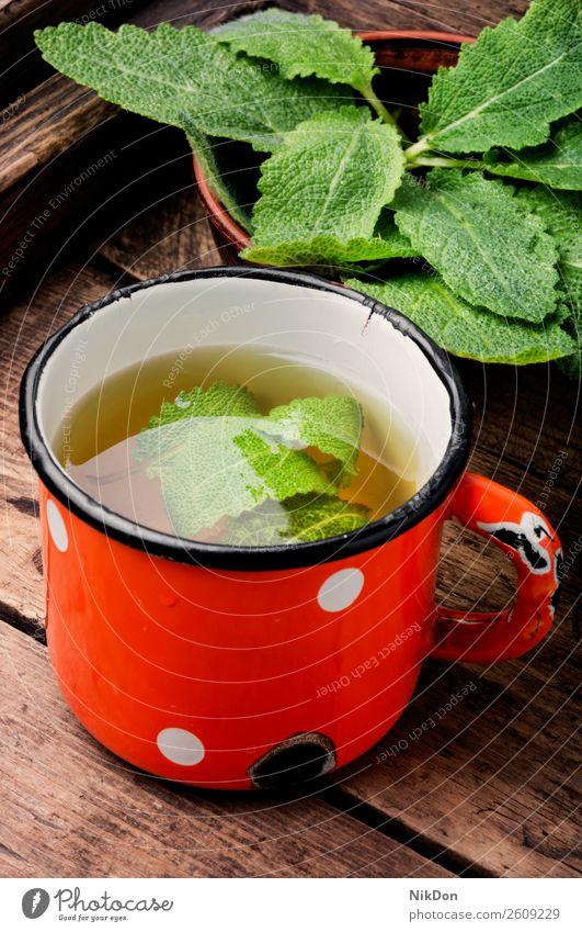 Tasse frischer Kräutertee Tee trinken Salbei Kraut Pflanze heiß natürlich hölzern Kräuterbuch Metallbecher Medizin Gesundheit Getränk grün Aroma Frische
