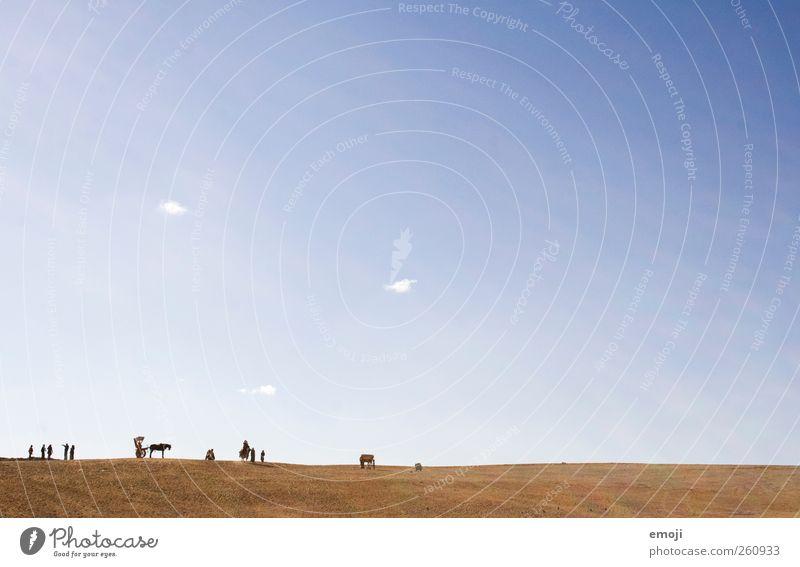 Mensch, ... Menschengruppe Menschenmenge Erde Himmel Wolkenloser Himmel Sommer Schönes Wetter Wärme Dürre Wüste außergewöhnlich Ferne Freiraum Miniatur klein