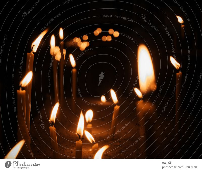 Flackernd Bamberg Dom Bayern Kerze Kerzenschein Bewegung glänzend leuchten Zusammensein viele Wärme Hoffnung Religion & Glaube Vertrauen Windzug Flamme