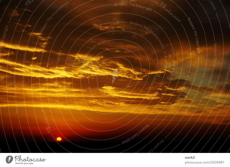 Abendlied Umwelt Himmel Wolken Horizont Sonne Schönes Wetter leuchten gigantisch glänzend Unendlichkeit einzigartig Ewigkeit Idylle Ferne Morgen Farbfoto