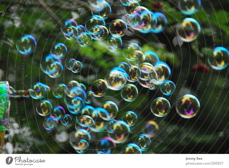 Seifenblasen, Bunt, Träumen, Entspannen, Freude Erholung Spielen Glück träumen Luft Feste & Feiern fliegen Freizeit & Hobby Geburtstag elegant frei Fröhlichkeit