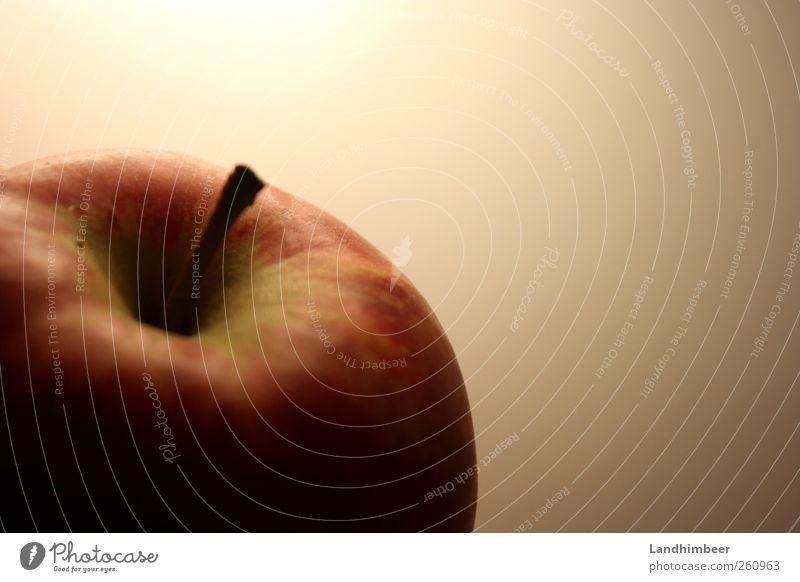 Der Apfel. rot Gesundheit Frucht Lebensmittel rund Apfel lecker