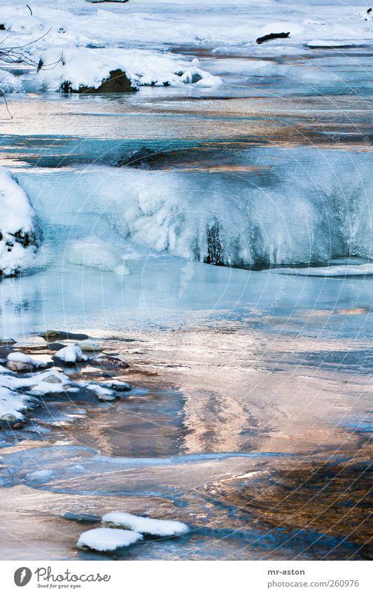 Icy Water 3 Umwelt Natur Landschaft Urelemente Wasser Winter Eis Frost Schnee Bach Stein ästhetisch kalt nass blau schwarz weiß ruhig Farbfoto Außenaufnahme