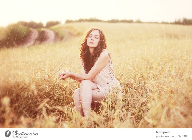 Mensch Natur Jugendliche schön Erwachsene Herbst feminin Gras Wärme träumen braun Erde Körper Feld gold rosa