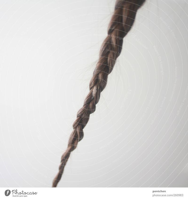 gretel Wand Haare & Frisuren ästhetisch Symbole & Metaphern lang brünett langhaarig Zopf hängend geflochten herunterhängend Rapunzel
