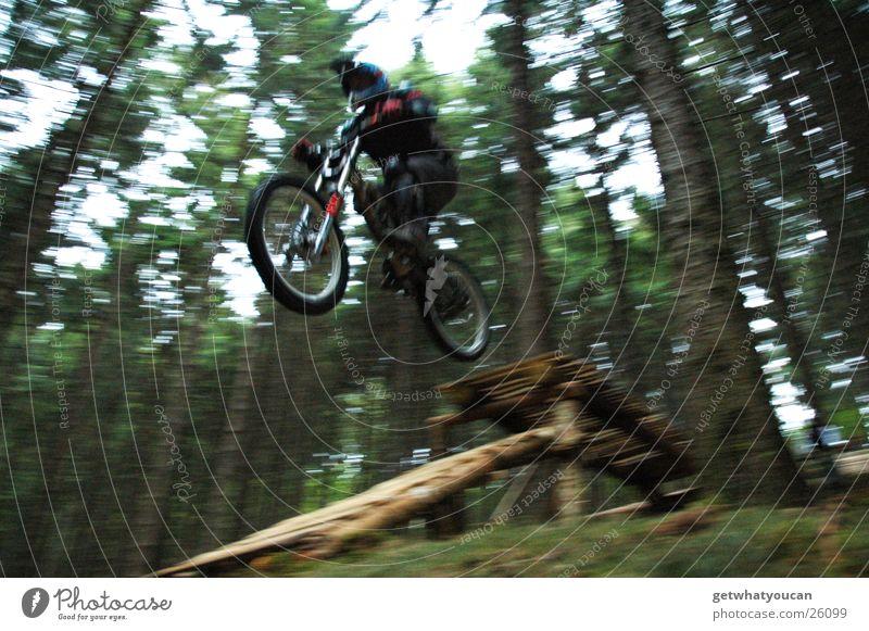 Drop Zone Mann Natur Himmel Baum Wald springen Angst Geschwindigkeit Schutz Mut Motorrad Helm Pflanze Extremsport Motocrossmotorrad Offroad