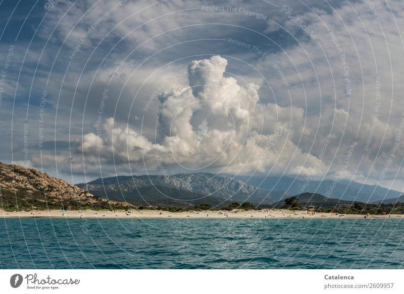 Wolkentürme Mensch Menschengruppe Natur Landschaft Sand Luft Wasser Himmel Gewitterwolken Sommer Schönes Wetter Grünpflanze Wellen Küste Strand Meer Mittelmeer