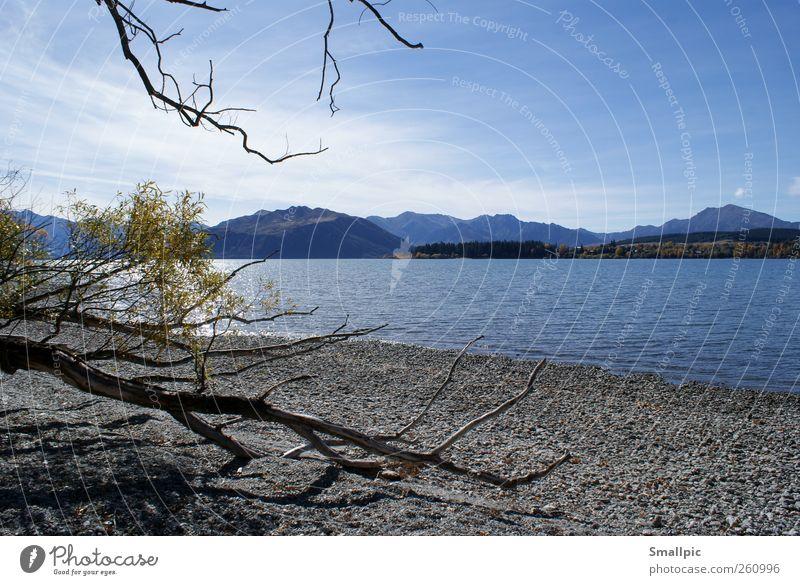 Ufer ruhig Ferien & Urlaub & Reisen Ferne Natur Landschaft Wasser Himmel Schönes Wetter Seeufer blau grau Zufriedenheit Einsamkeit Farbfoto Außenaufnahme Tag